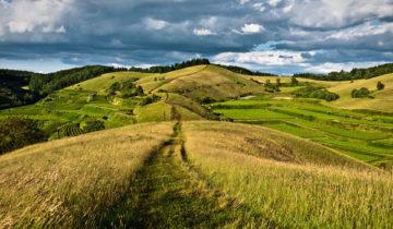 сон про холм