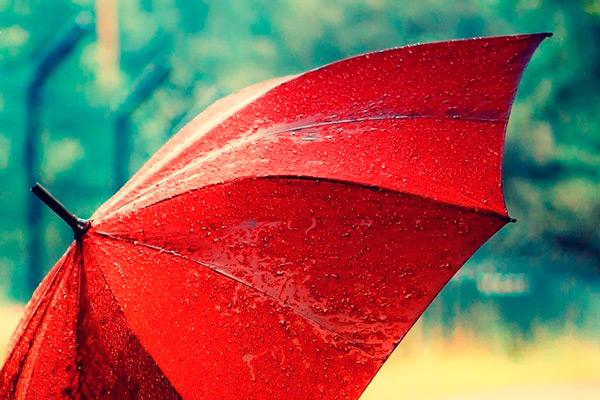 сон про зонтик
