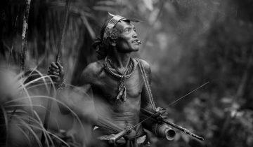 сон по аборигена