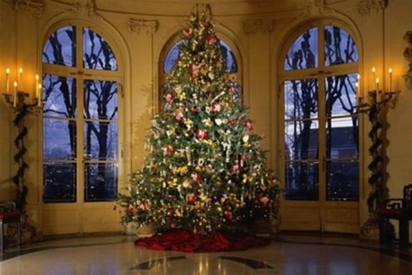 сон про елку (новогоднюю)