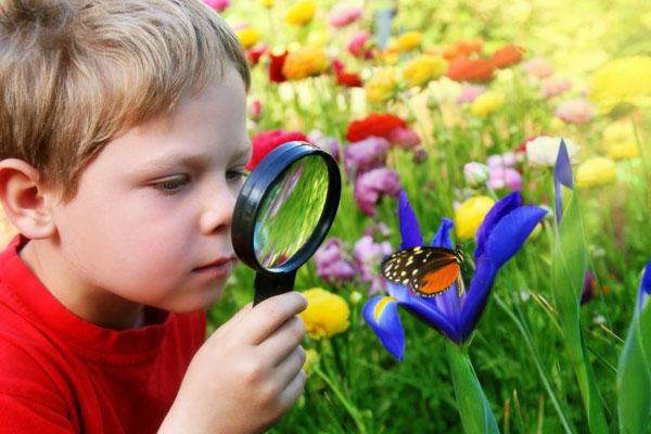 сон про естествоиспытателя
