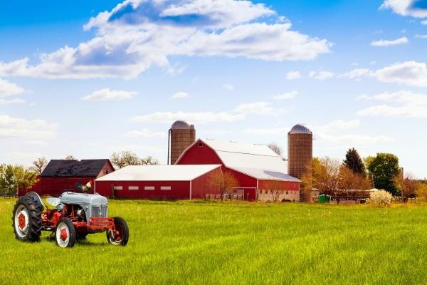 сон про ферму