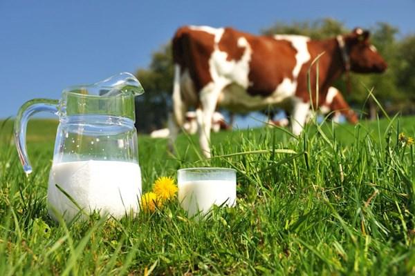 сон про молоко