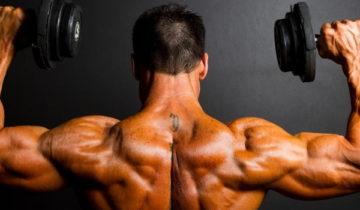 сон про мускул