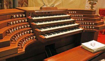 сон про орган