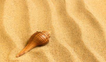 песня про песок
