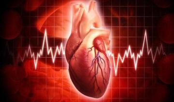 сон про сердце