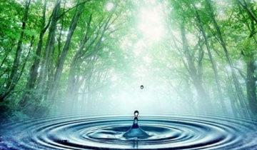 сон про воду